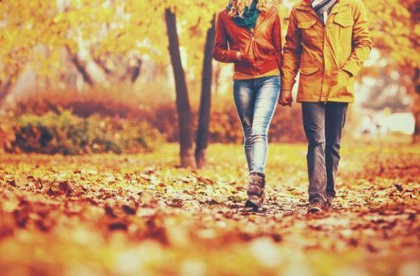 恋愛,秋,恋心,お付き合い
